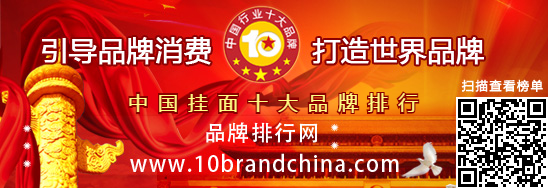 """""""2017年度中国稳压器十大品牌总评榜""""荣耀揭晓"""